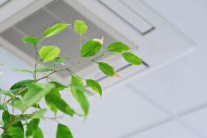 Katia Nadalini - misura la qualità dell'aria in ufficio